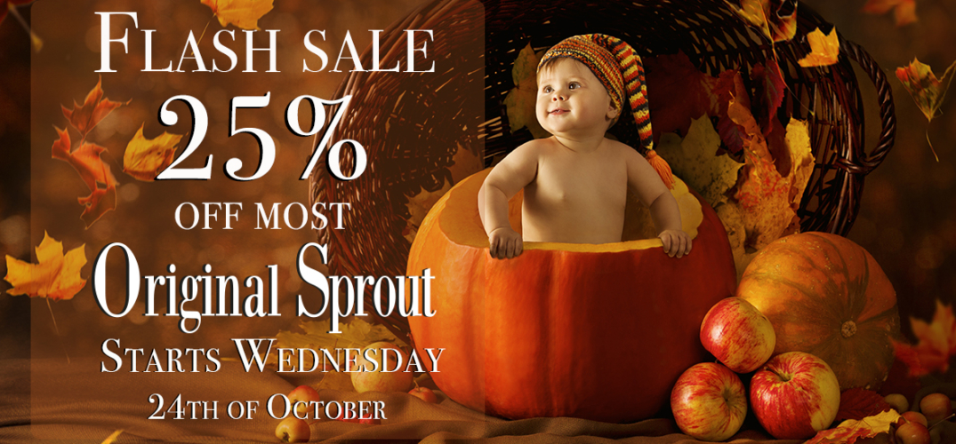 25%-flash-sale-for-halloween