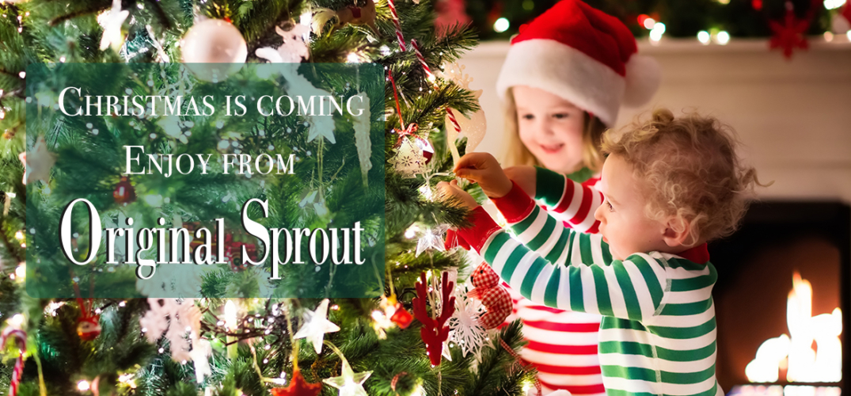 Christmas-is-coming